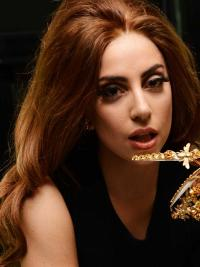 "24"" Flexibility Long Wavy Without Bangs Lady Gaga Wigs"